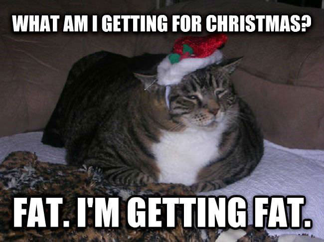Christmas is coming and Sarah's getting fat!